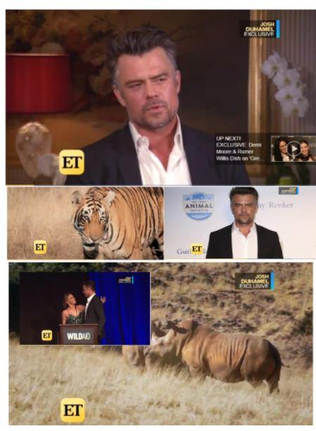 WildAid Ambassador Josh Duhamel on ET